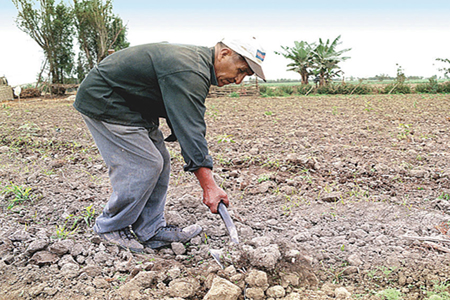 reto-ser-agricultor