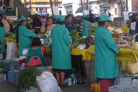 alimentos-Chiriboga